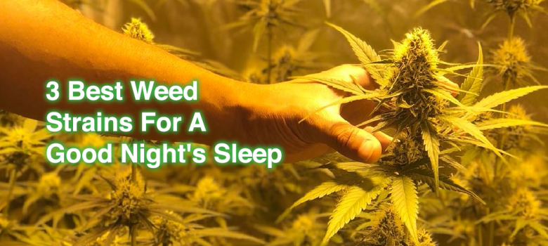 Best Weed For Sleep