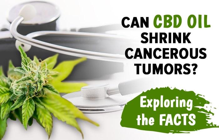 Cbd Oil For Tumors