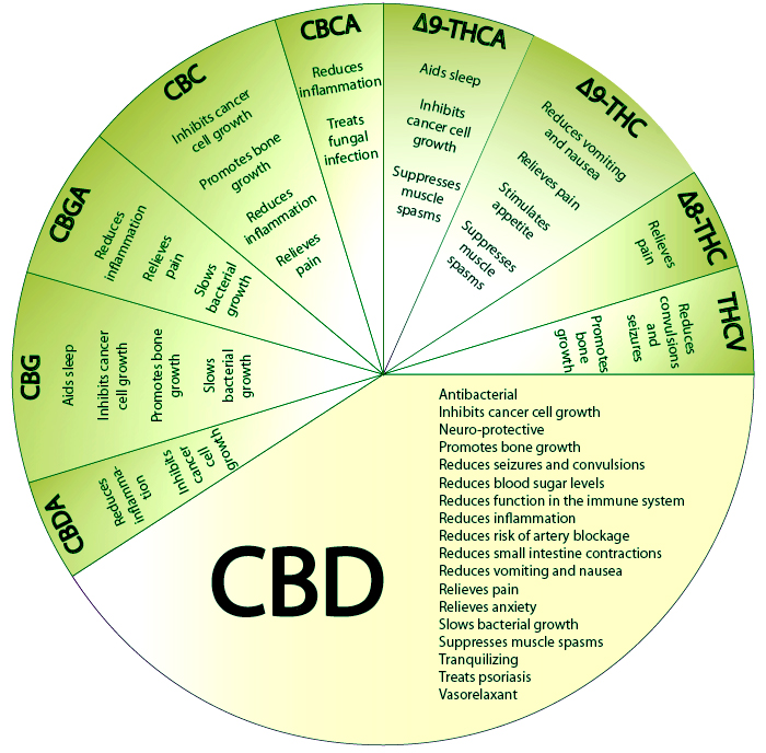 Facts About Cbd Oil