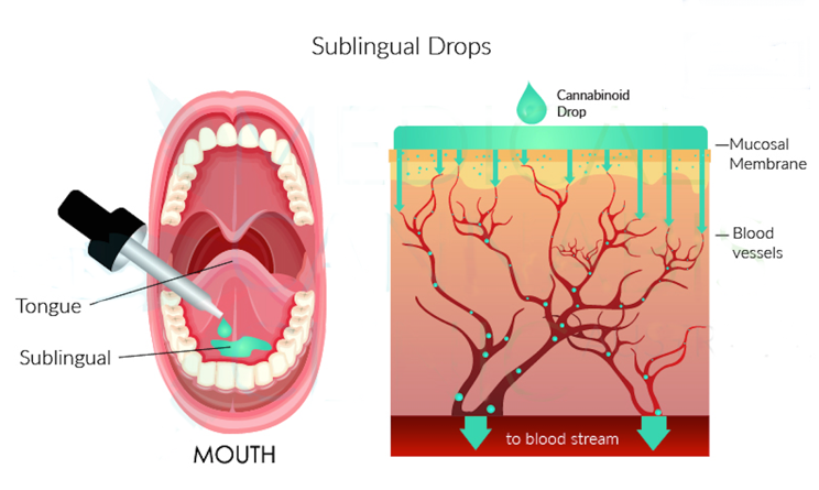 How Long Ahould Toy Keep Cbd Oil Under Tongue