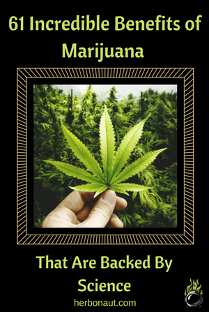 Medical Benefits Of Marijuanas