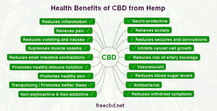 What Are The Benefits Of Hemp Cbd Oil