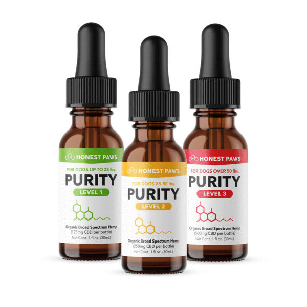 Who Makes The Highest Quality Cbd Oil