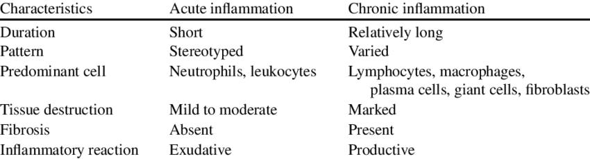Characteristics Of Inflammation